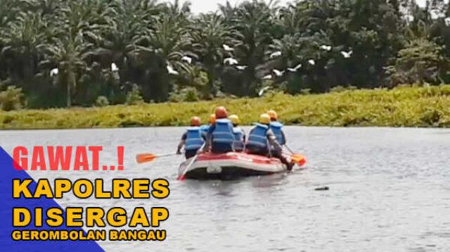 Tiga perwira polisi dihadang kawanan bangau saat mengarungi Danau Kawutan Serunting, Selasa siang