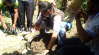 Peletakan batu pertama pembangunan toilet warga dilakukan Camat Bunga Mas